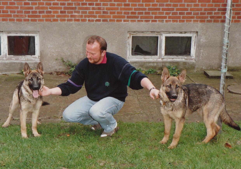 Ascani's Cani og Ascani's Chikai 5 mdr