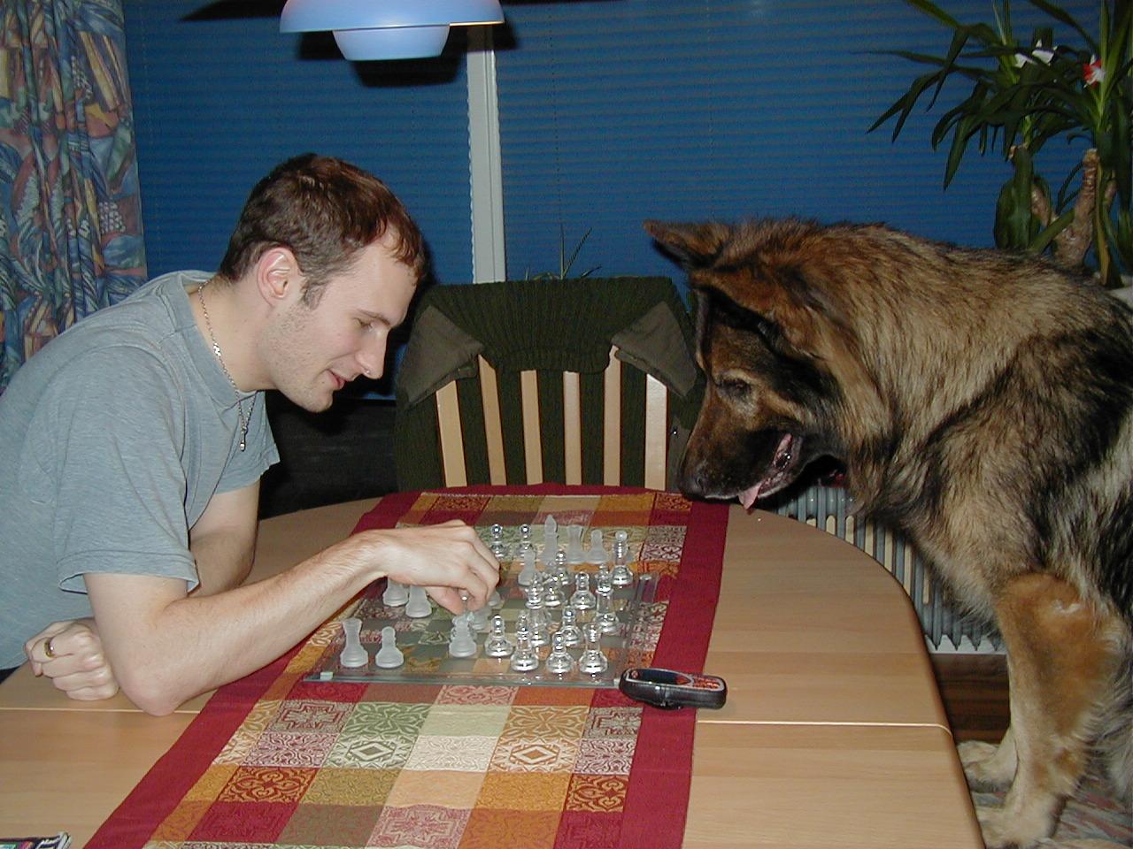 Kendo spiller skak me Bjarne