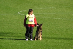 VM 2004