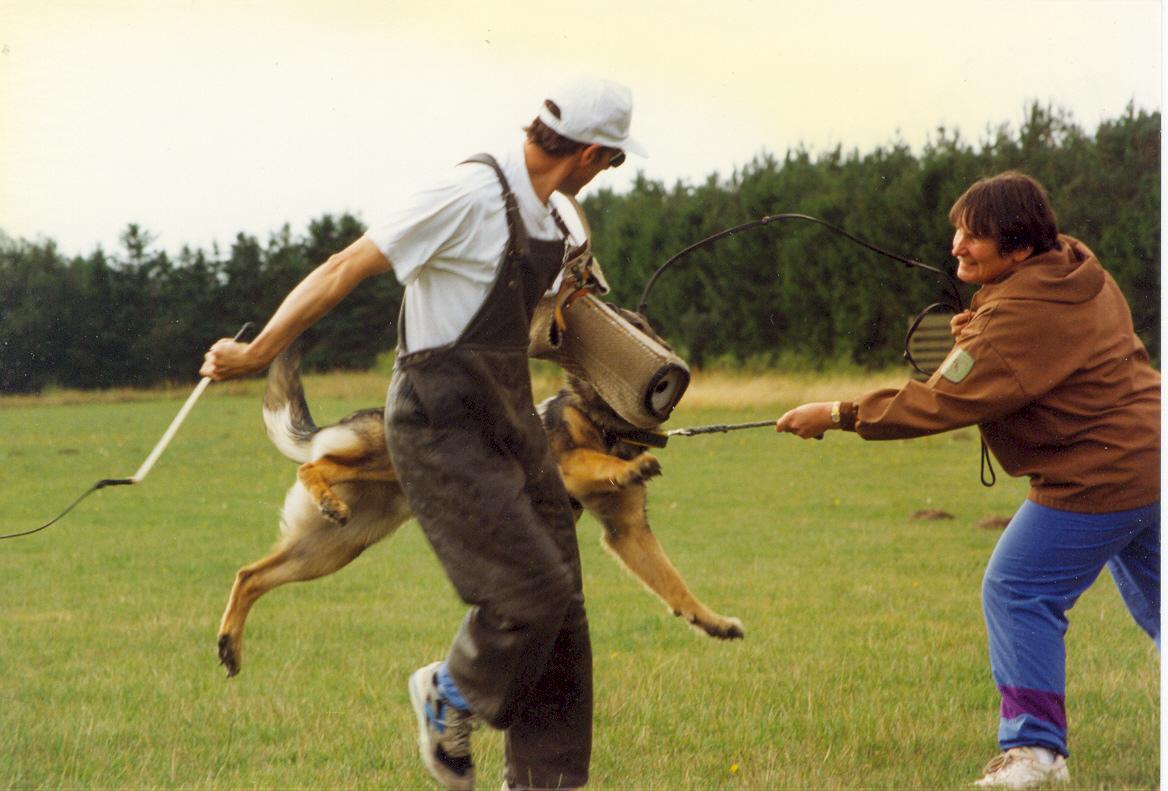 Per og Fenner in action